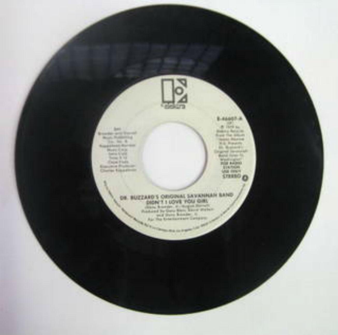 Dr. Buzzard's Original Savannah Band / Didn't I Love You Girl
