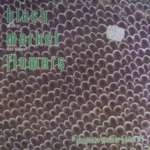 Black Market Flowers / Gladiola Flower Petal 2