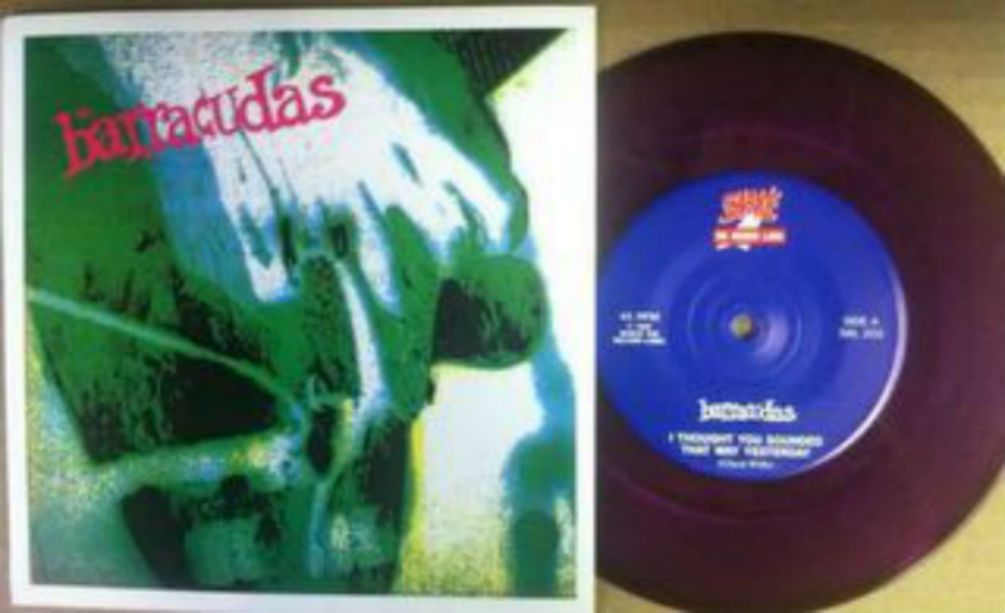 Barracudas / I Thought You Sounded That Way Yesterday