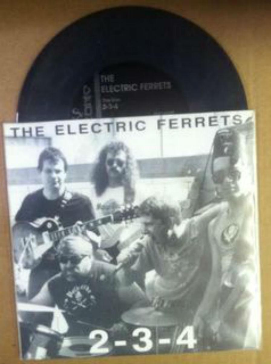 Electric Ferrets / 2-3-4