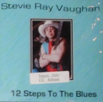 Stevie Ray Vaughan / 12 Steps To The Blues